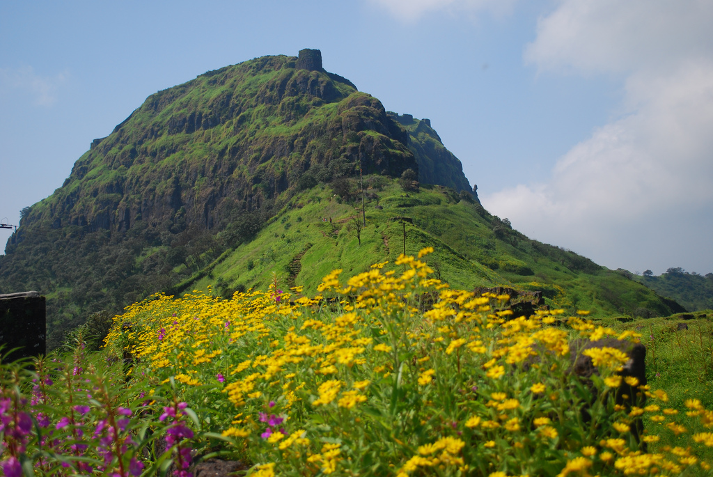 Rajgad_after_monsoon